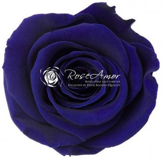 Geconserveerde longlife donker blauwe rozen (6 stuks)