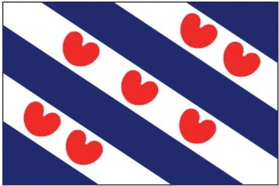 Afbeeldingsresultaat voor friese vlag