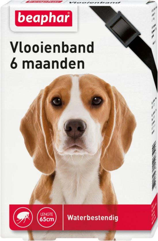 Beaphar vlooienband hond zwart - 1 st
