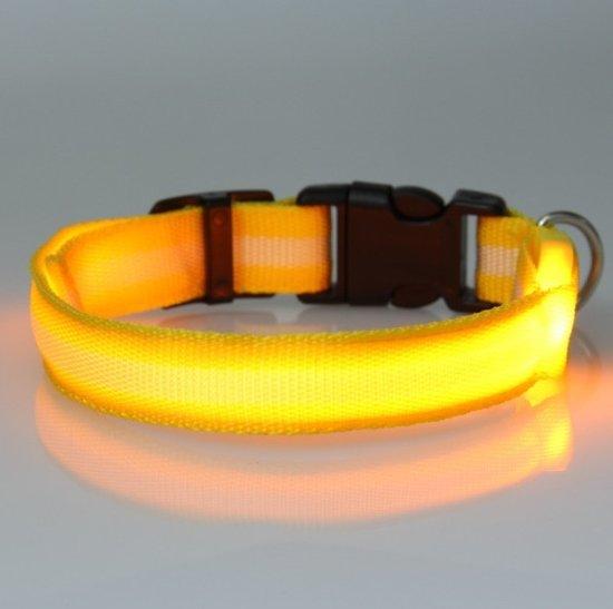 bol.com   hondenhalsband led verlichting Large Geel