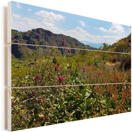 Wilde bloemen op het berglandschap van het Nationaal park Vesuvius in Italië Vurenhout met planken 40x30 cm - klein - Foto print op Hout (Wanddecoratie)