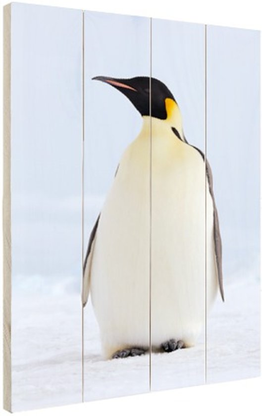 Keizerpinguin  Hout 60x80 cm - Foto print op Hout (Wanddecoratie)