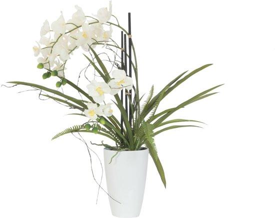Bloemen In Pot.Europalms Orchidee Kunstplant Met Pot Witte Bloemen 70 Cm Hoog