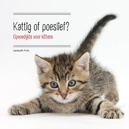 Kattig Of Poeslief?