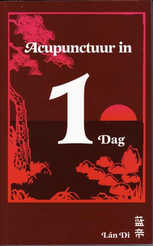 Acupunctuur In Een Dag
