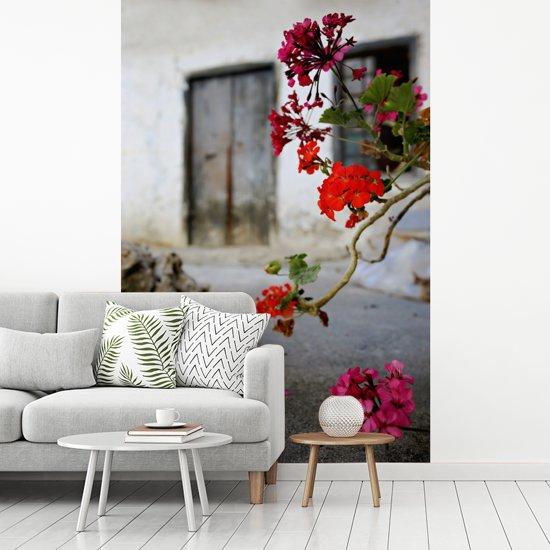 Fotobehang vinyl - Geranium bloemen op straat breedte 270 cm x hoogte 400 cm - Foto print op behang (in 7 formaten beschikbaar)