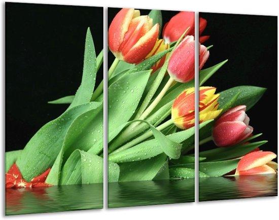 Glasschilderij Tulpen | Rood, Geel, Groen | 120x80cm 3Luik | Foto print op Glas |  F000560