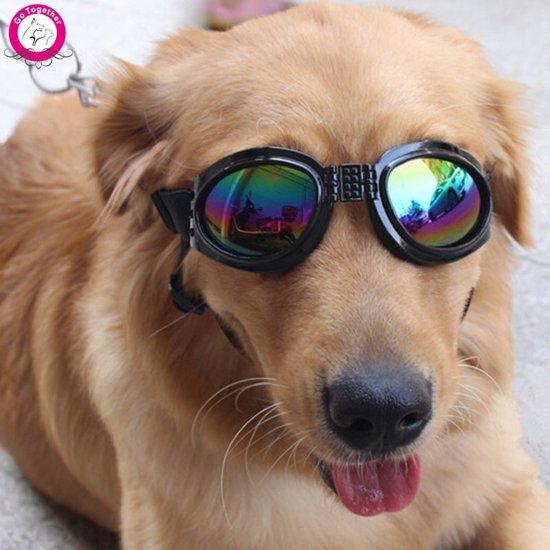 Hondenbril zon- en beschermingshondenbril - (zwart)
