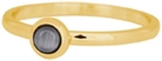 iXXXi Vulring natuursteen grijs goudkleurig 2mm - maat 20