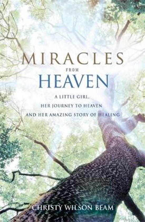 Afbeeldingsresultaat voor miracles from heaven boek annabell
