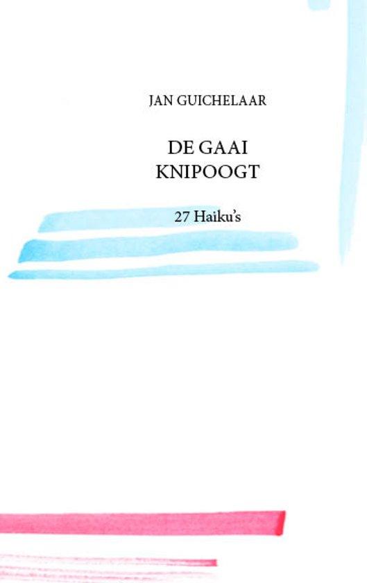 De Gaai Knipoogt