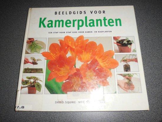 Beeldgids voor kamerplanten