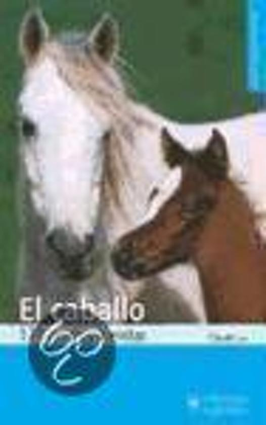 El caballo, 173 errores a evitar / The horse, 173 mistakes to avoid