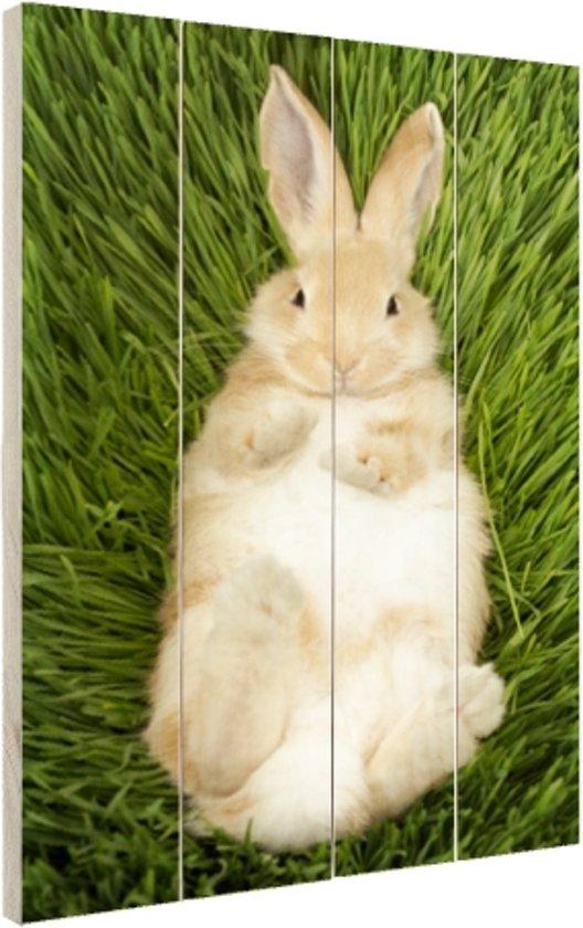 Konijn liggend in gras Hout 60x80 cm - Foto print op Hout (Wanddecoratie)