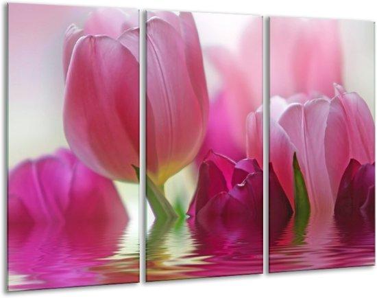 Glasschilderij Tulpen | Roze, Wit, Groen | 120x80cm 3Luik | Foto print op Glas |  F002872