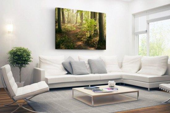 Wanddecoratie Op Canvas.Bol Com Pad In Het Bos Canvas 80x60 Cm Foto Print Op