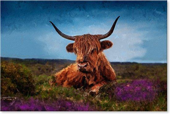 Schotse Hooglander op de Veluwe - Schilderij op Canvas