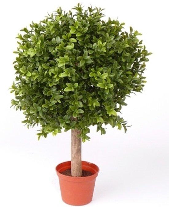 Buxus bol kunstplant op stam in pot 35 cm