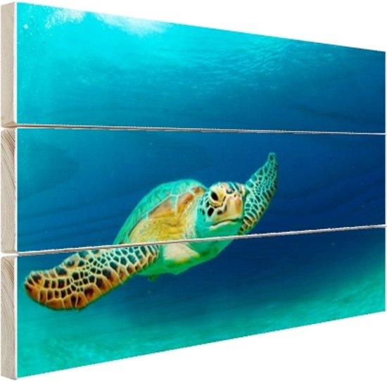 Close-up foto van groene zeeschildpad Hout 120x80 cm - Foto print op Hout (Wanddecoratie)