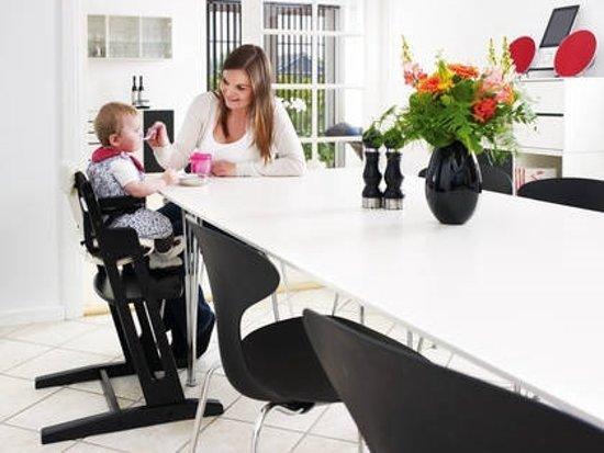 Baby Dan Meegroeistoel.Babydan Meegroeistoel Dan High Chair Zwart