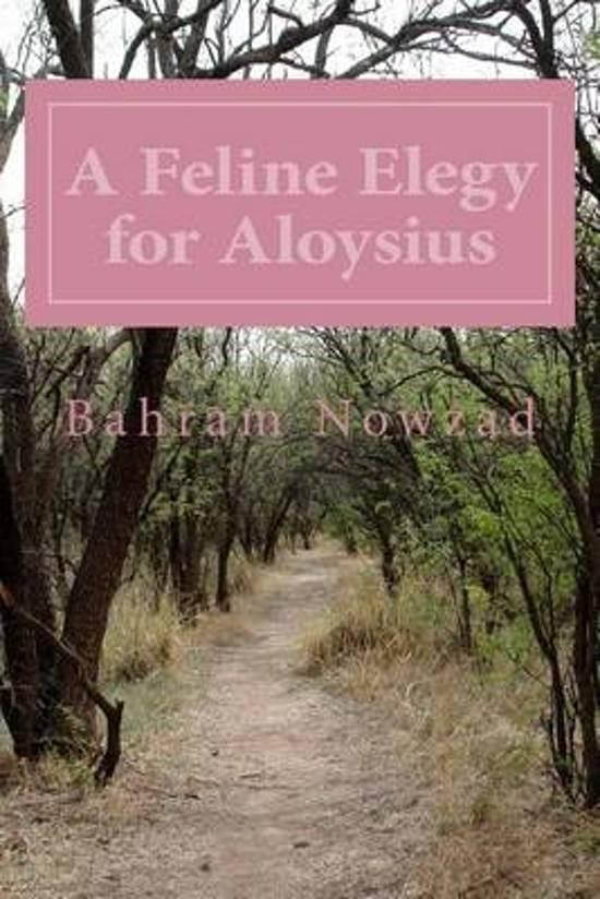 A Feline Elegy for Aloysius