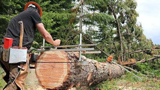 Holzfforma mobiele houtzagerij 36'' (chainsaw mill)