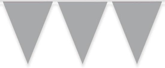Vlaggenlijn - Zilver - 10 meter