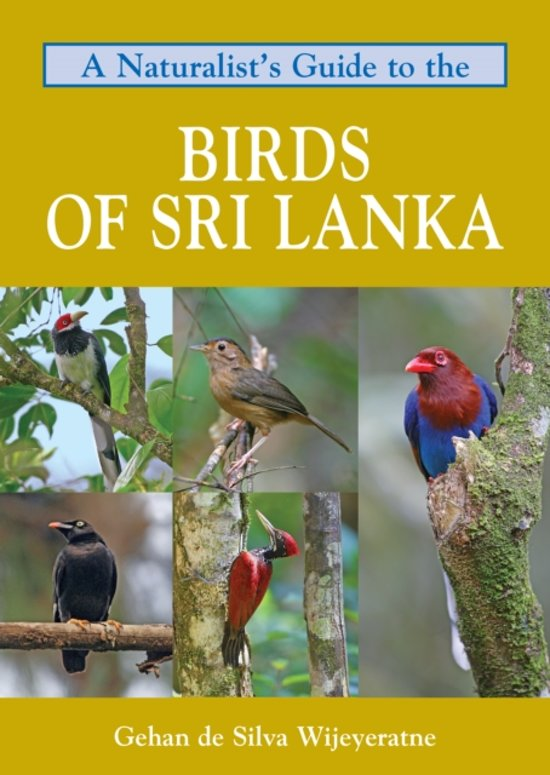 Natuurgids: A Naturalist's Guide to the Birds of Sri Lanka cover