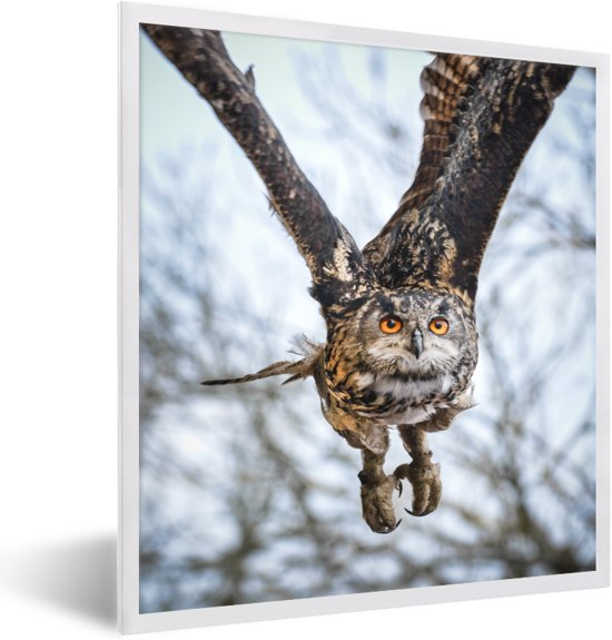 Foto in lijst - Een vliegende oehoe met bomen op de achtergrond fotolijst wit 40x50 cm - Poster in lijst (Wanddecoratie woonkamer / slaapkamer)