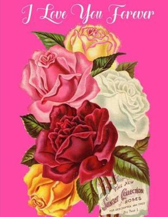 Bolcom I Love You Forever 9781543044003 Love U2 Journal Boeken