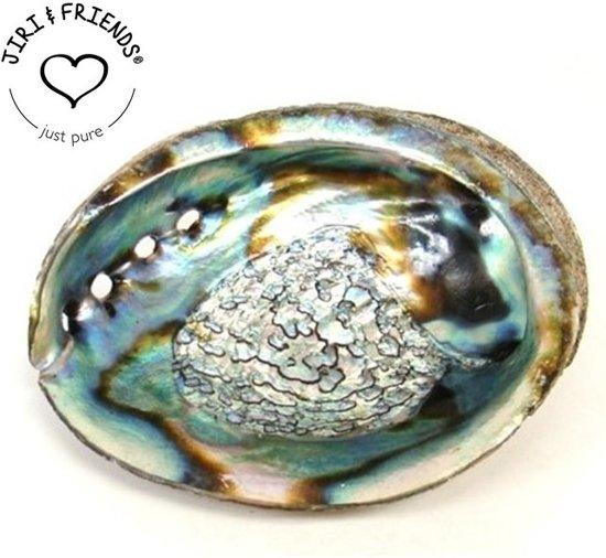Abalone schelp om te SMUDGEN