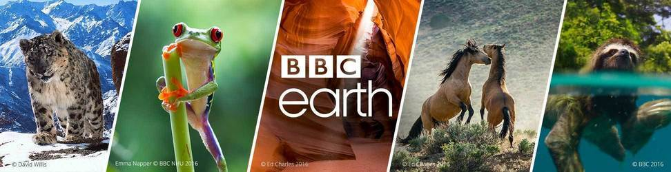 De mooiste natuurfilms en natuurdocumentaires van BBC Earth vind je in de BBC Earth shop