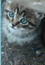 Blue-eyed Gem Kitten Notebook