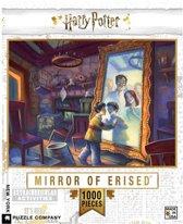 Harry Potter Mirror of Erised puzzel - 1000 stukjes - New York Puzzle Company