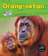 Dieren in beeld - Orang-oetan