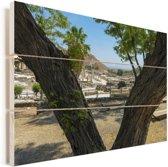 Foto door de bomen van Beit She'an in Israël Vurenhout met planken 90x60 cm - Foto print op Hout (Wanddecoratie)