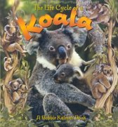 The Life Cycle of the Koala