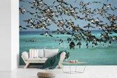 Fotobehang vinyl - Een zwerm bruine genten vliegt over zee breedte 330 cm x hoogte 220 cm - Foto print op behang (in 7 formaten beschikbaar)