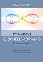 Praktijkboek dynamische oordeelsvorming