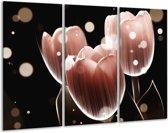 Canvas schilderij Tulp | Bruin, Zwart | 120x80cm 3Luik
