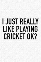 I Just Really Like Playing Cricket Ok?
