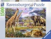 Ravensburger puzzel Kleurrijk Afrika - Legpuzzel - 1500 stukjes