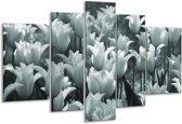 Glas schilderij Tulpen, Bloemen | Grijs, Groen | 170x100cm 5Luik | Foto print op Glas |  F006848