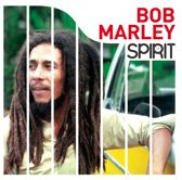 Spirit of Bob Marley (LP)