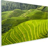 Bovenaanzicht van de Rijstterrassen van Lóngjĭ in China Plexiglas 30x20 cm - klein - Foto print op Glas (Plexiglas wanddecoratie)