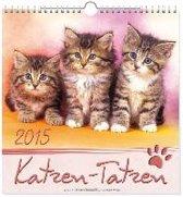 Katzen-Tatzen 2020