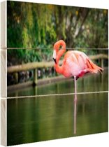 Een roze flamingo Hout 80x60 cm - Foto print op Hout (Wanddecoratie)