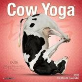 Cow Yoga 2020 Mini Wall Calendar