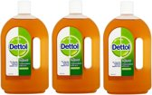 3 x Dettol Reinigingslotion Antiseptic Disinfectant Liquid Lotion