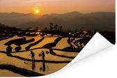 Prachtig beeld van een rijstveld bij zonsondergang Poster 120x80 cm - Foto print op Poster (wanddecoratie woonkamer / slaapkamer)